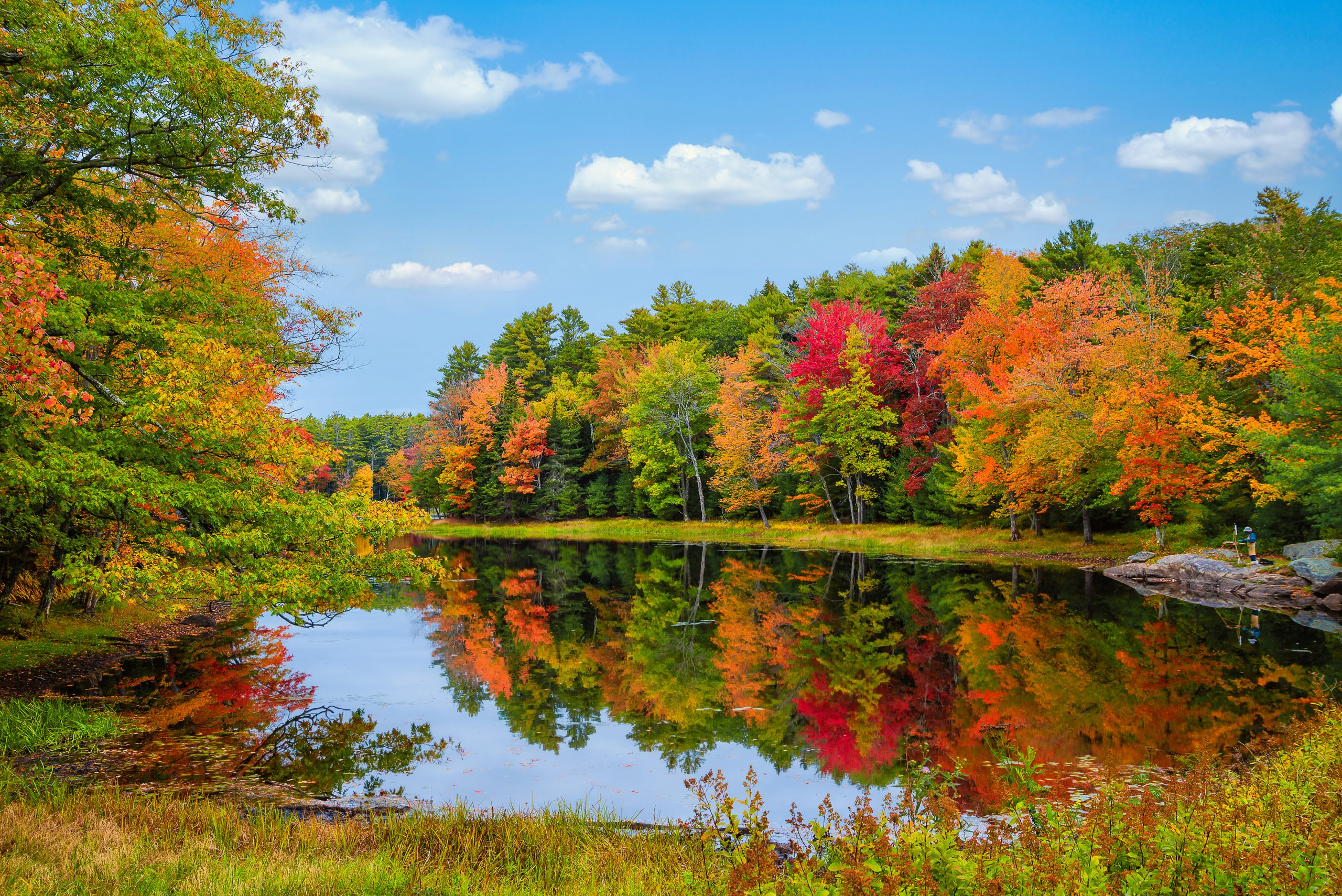 Hello, Autumn! Things to Do in CT in the Fall for the Whole Family